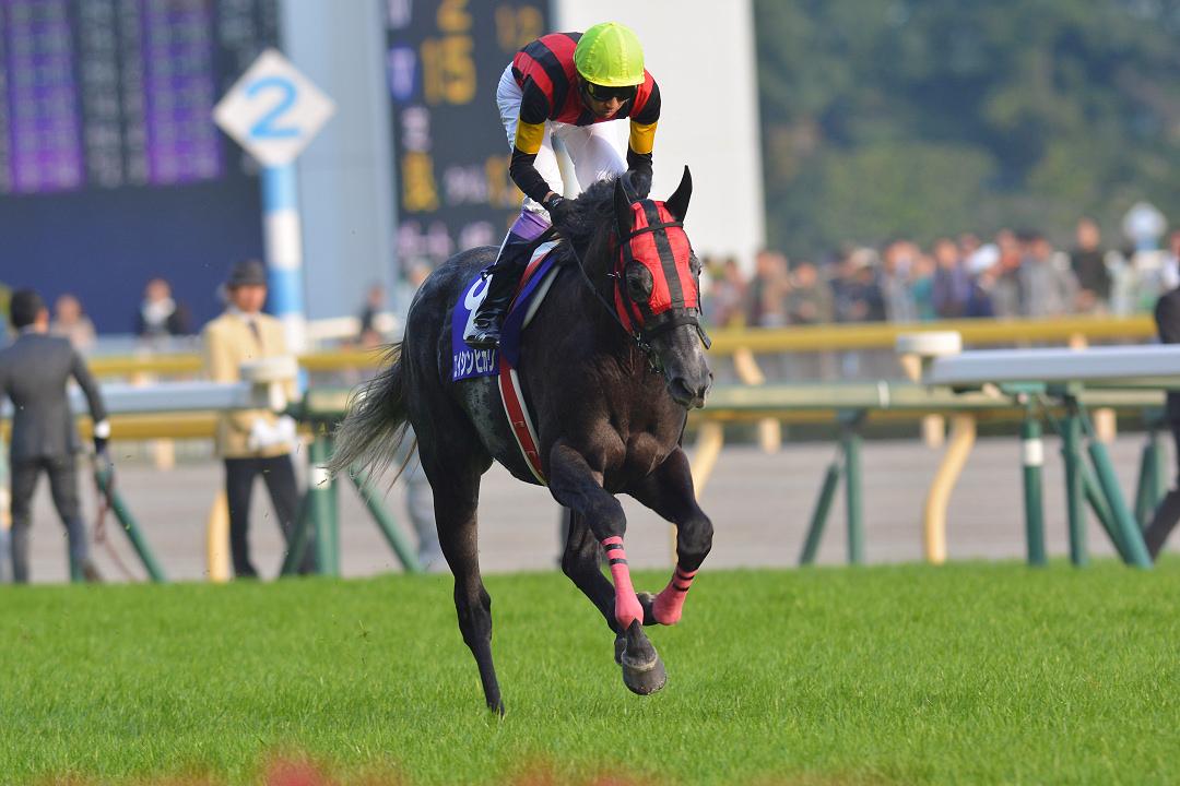 エイシンヒカリ〜ディープ産駒の『異能の馬』〜