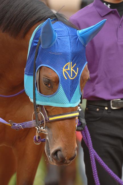 オーストラリア競馬の祭典!メルボルンカップとは?