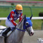 引退馬に新たな道を!競走馬再デビューへの支援〜『馬と歴史と未来の会』の取り組みとは〜