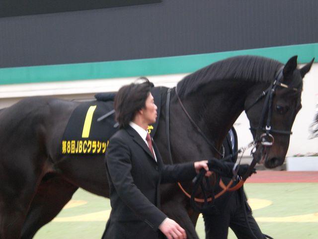 第8回JBC競走観戦記~園田で見た、ドバイへの夢