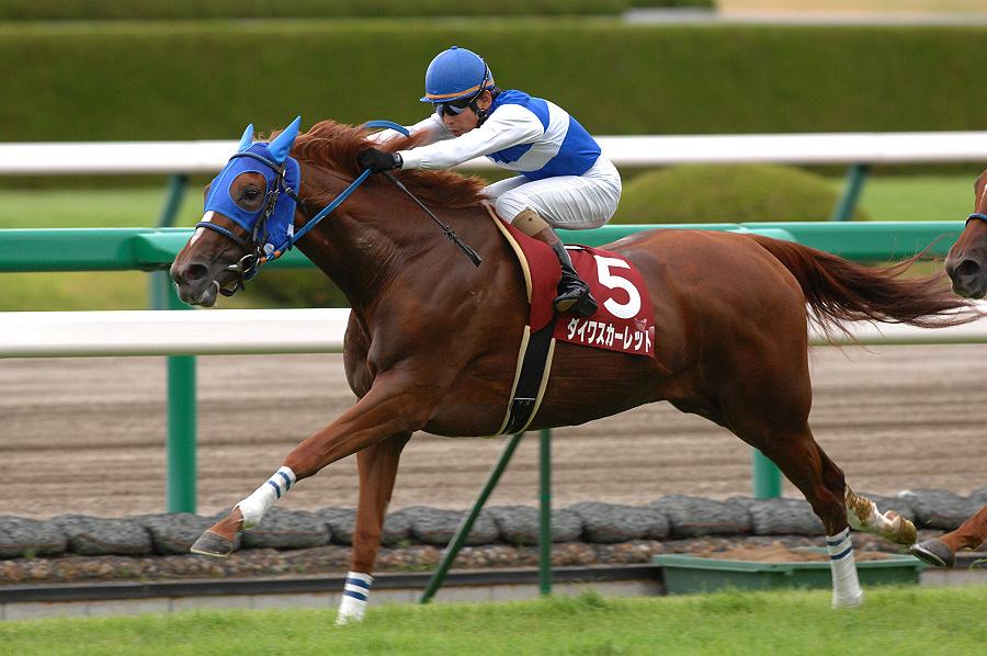 桜花賞馬vsダービー馬、永遠のライバル対決『第3章』2007年 秋華賞