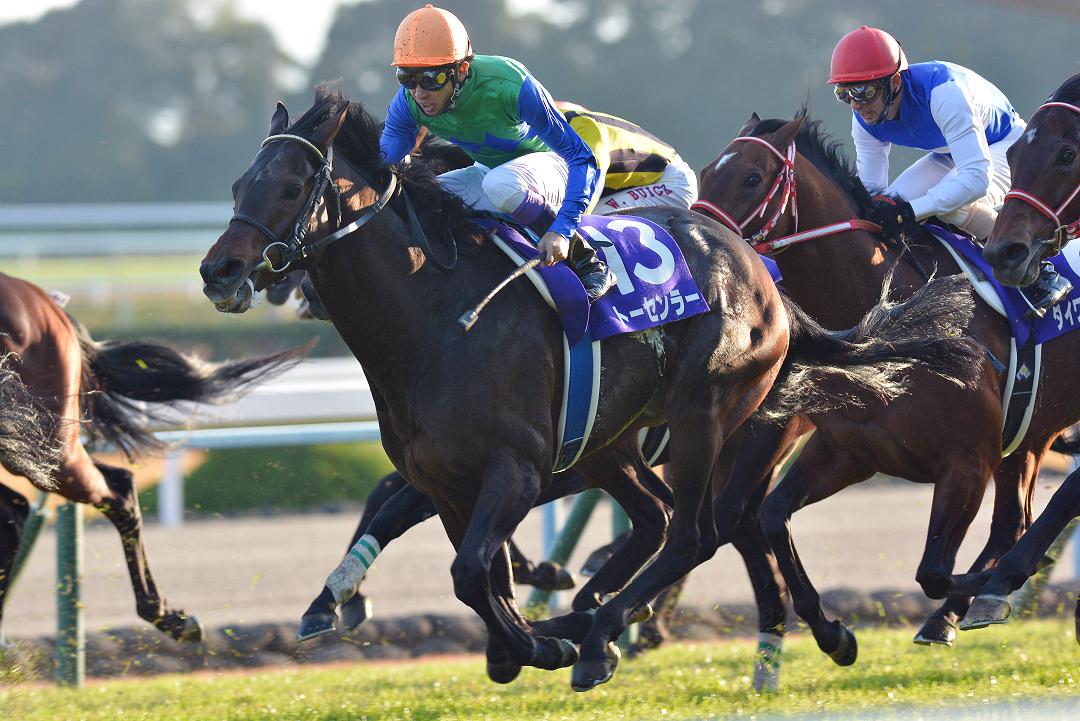 [Rewind the race]京都之神~2013年・マイルチャンピオンシップ~