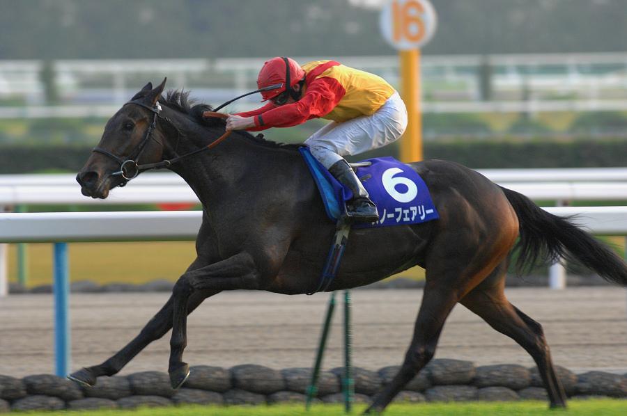 日本の競馬ファンを震撼させた脅威の末脚〜 2010年・エリザベス女王杯〜