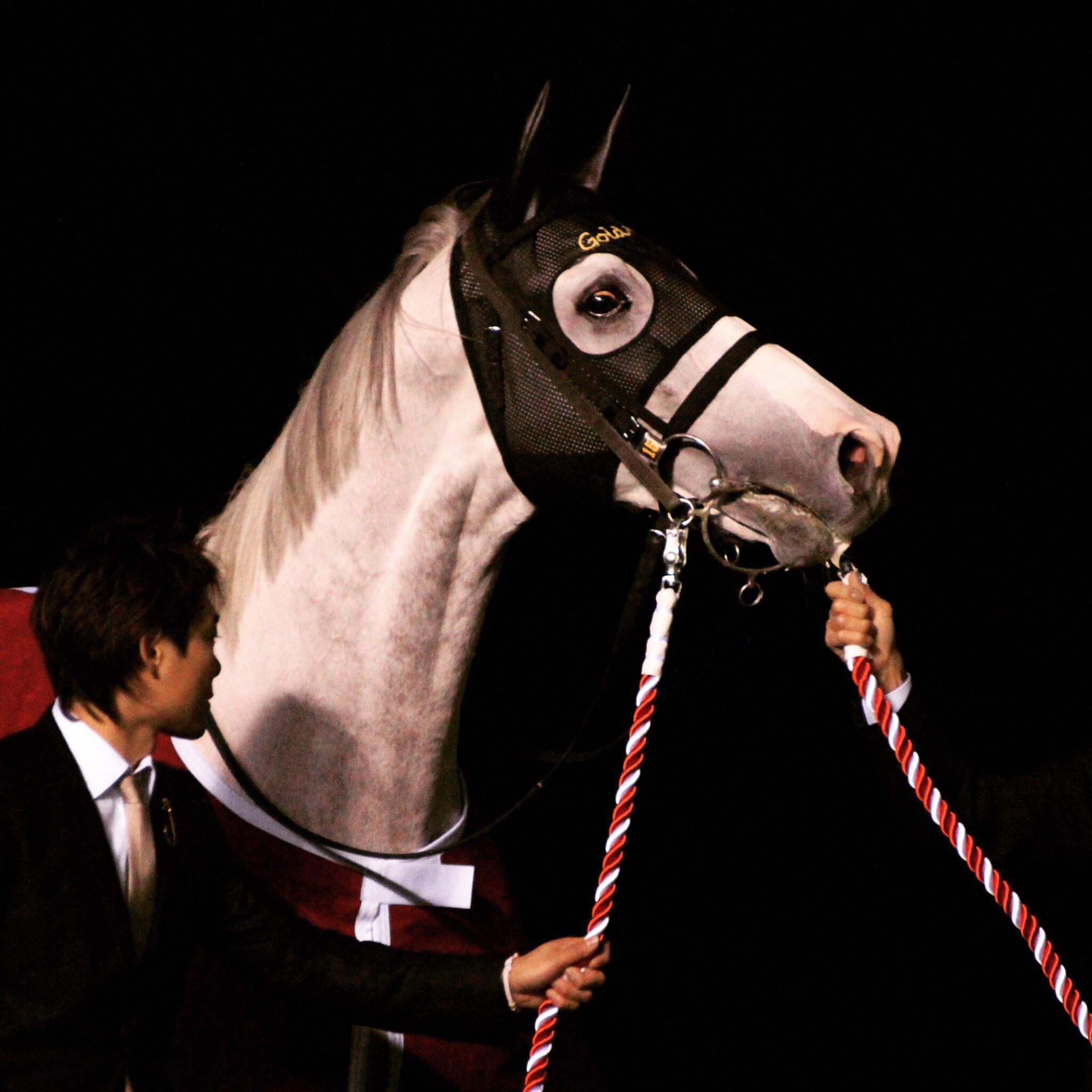 夜空にいななく ゴールドシップ引退式 | 競馬コラム&ニュース「ウマフリ」