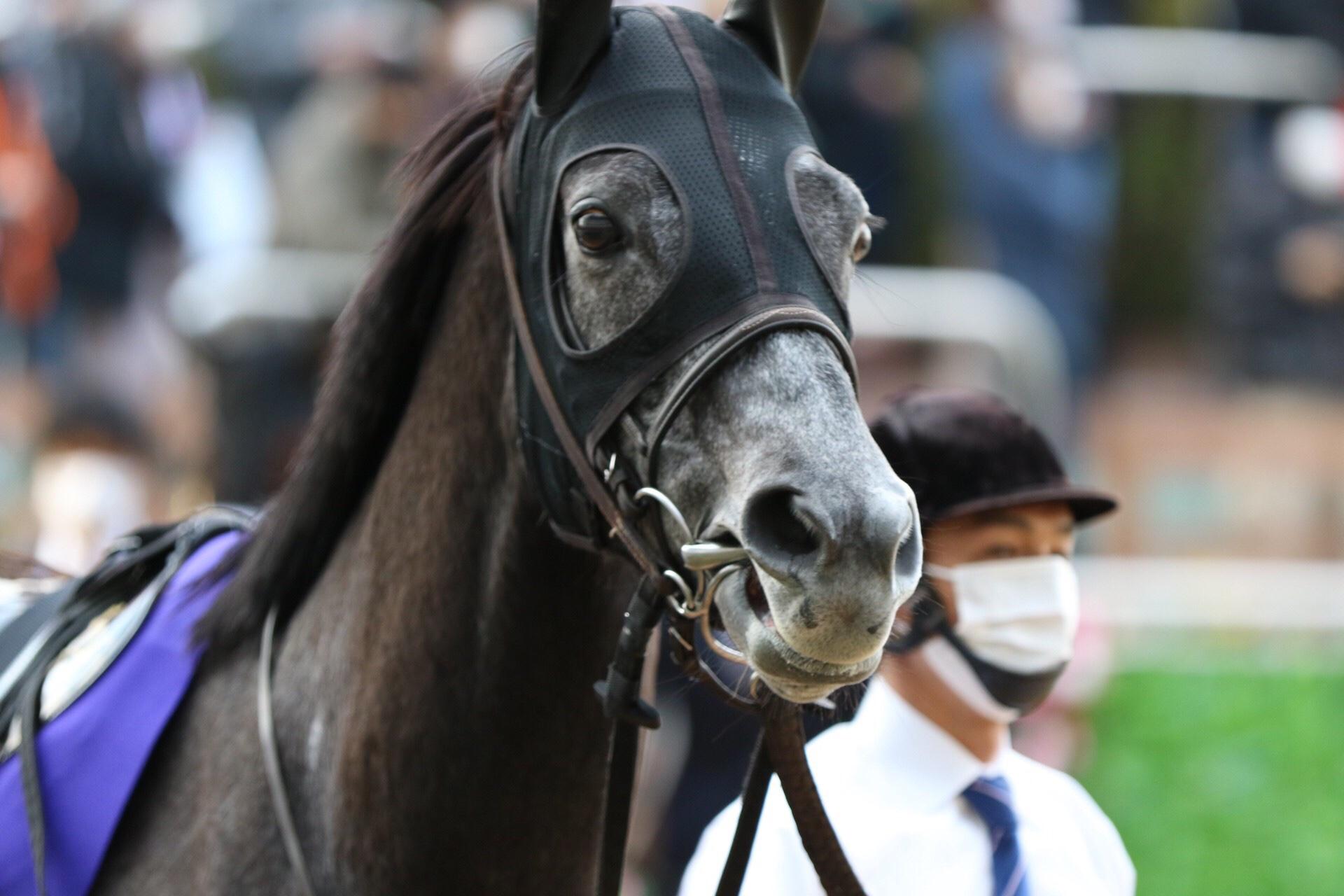 [重賞回顧]今年も牝馬が春秋グランプリ制覇の快挙達成 〜2020年・有馬記念〜