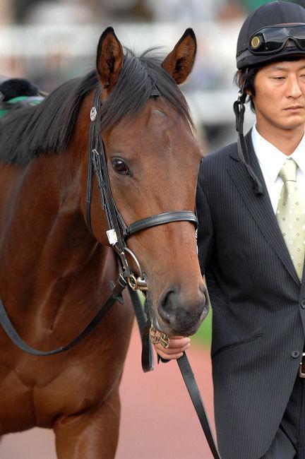 土砂降りの雨、そのあとに。~2009年日本ダービー・ロジユニヴァース~