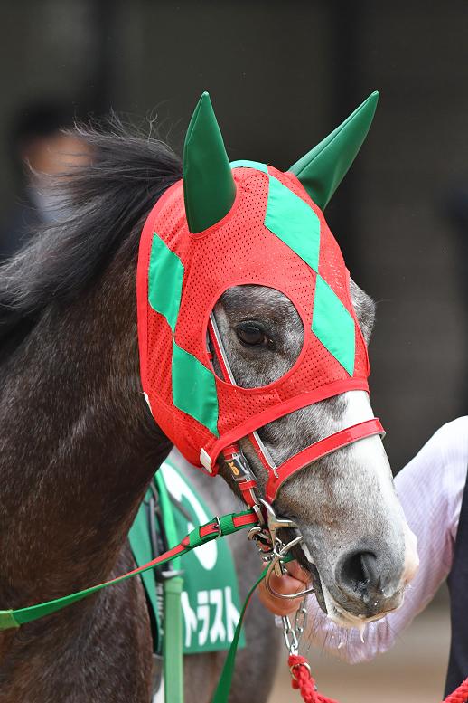 [競馬ニュース]3月20日、21日に出走する岡田繁幸氏ゆかりの馬たち