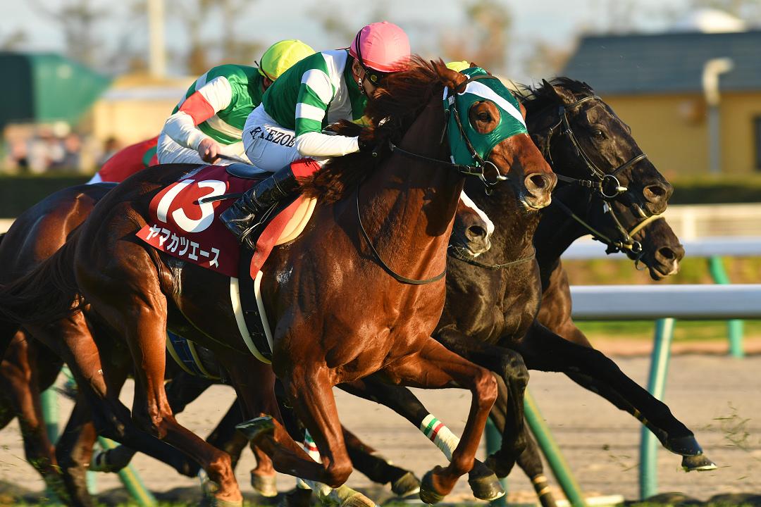 「競馬嫌い」の僕を「競馬好き」にした競走馬、ヤマカツエース。