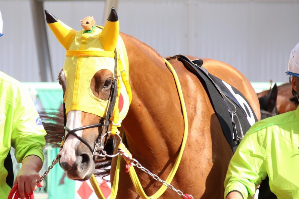 ゲットだぜ!競馬界の「ポケモン」馬、大集合!