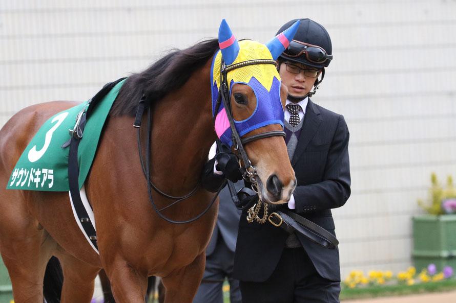 [重賞回顧]第58回スポーツニッポン賞京都金杯(GⅢ)~京都巧者の新たなる面~