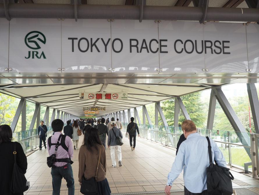 ビギナーさんと楽しむ!東京競馬場ツアー①