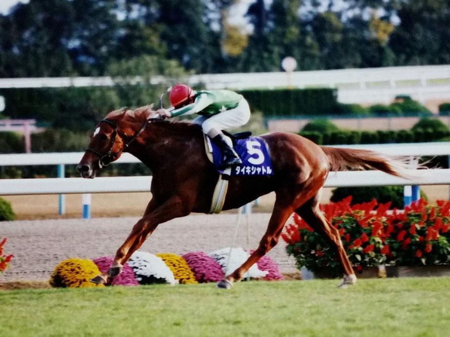 [平成名勝負]1マイル1分37秒5の、最速〜1998年安田記念・タイキシャトル〜