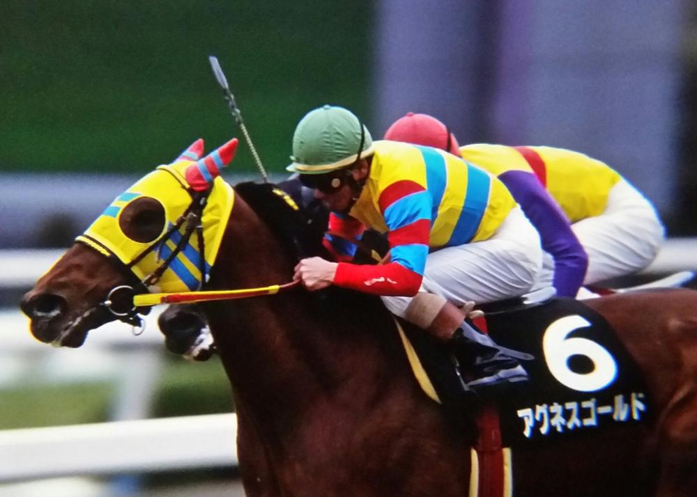 [競馬タイムトラベル]2001年きさらぎ賞・アグネスゴールド