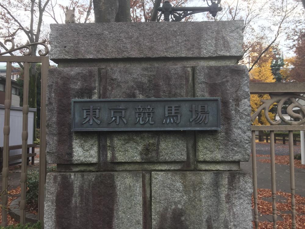 夢と現実の折り合い 「東京競馬場誘致」の行間を読む