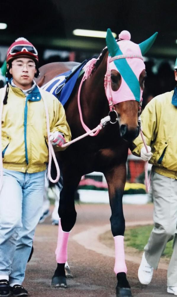 ただ同じ砂の上で~ 1998年 帝王賞に寄せて   競馬コラム ...