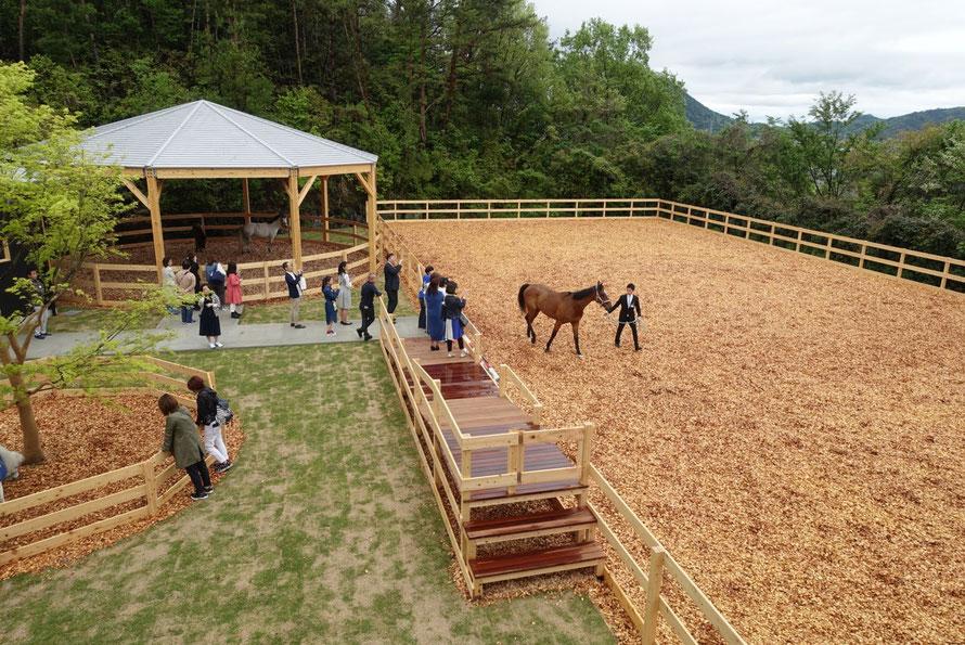「馬と人の福祉」の時代~TCC Therapy Park竣工式&レセプションパーティー取材手記~