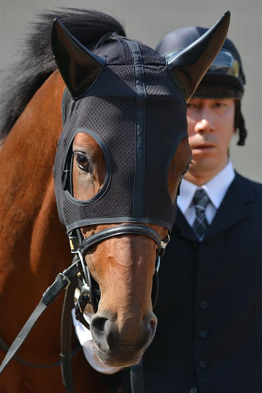 """あの日、友と見た""""いい馬""""の記憶 - ワールドエース"""