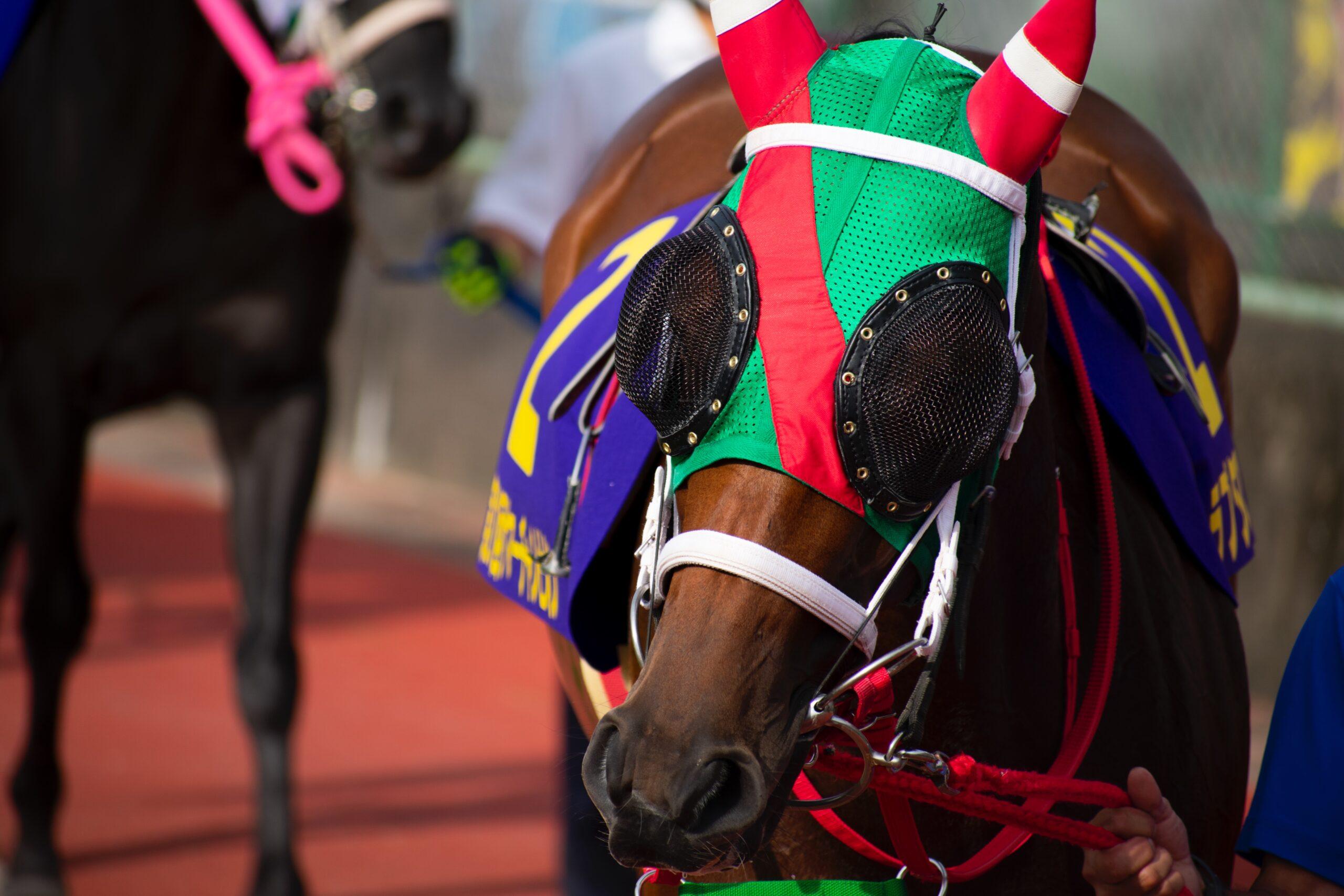 [地方レース回顧]佐賀のキングと夏の王座へ~2021年・サマーチャンピオン~