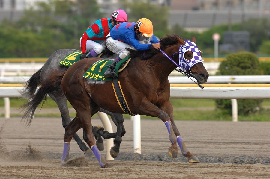 [日本テレビ盃]フリオーソにアブクマポーロ……日本テレビ盃で勝利した地方の名馬たち。