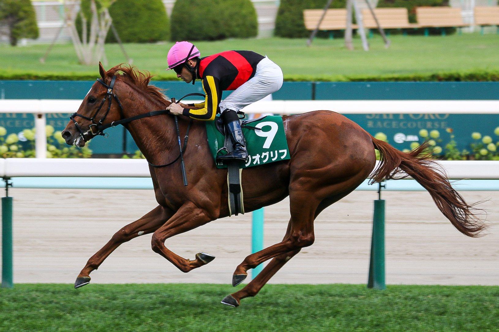 [重賞回顧]新種牡馬の産駒が魅せた、圧巻のパフォーマンス~2021年・札幌2歳ステークス~